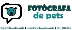 fotografia de pets7_PRISCILA_BARCELLOS