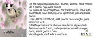 NANDA_TEXTO_PIN