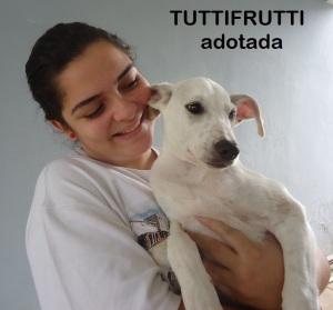 Tutti_adoção