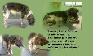 Baruk_clinica